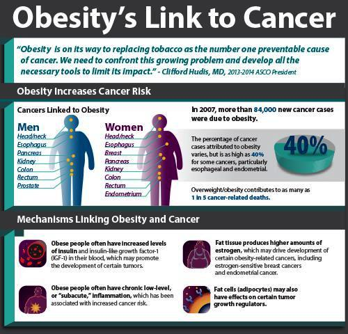 Obesity Linked to Several Cancers